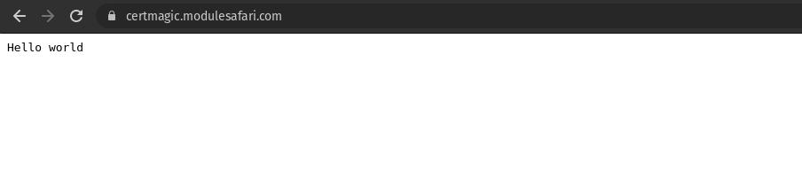 certmagic browser https